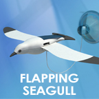 flappingseagull.jpg